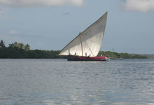 Pole Dhow Mini 0037