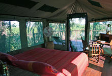 Selous Impala Family Tent7 Interior2